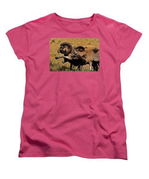 Women's T-Shirt (Standard Cut) featuring the photograph Rams At Half-time by Doc Braham