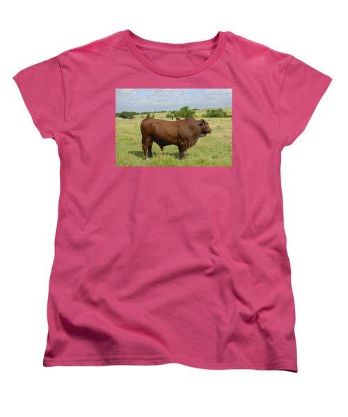 Red Angus Bull Women's T-Shirt (Standard Cut) by Charles Beeler