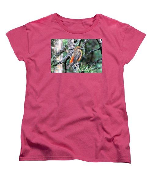 Red Crossbill On Pine Tree Women's T-Shirt (Standard Cut) by Marilyn Burton