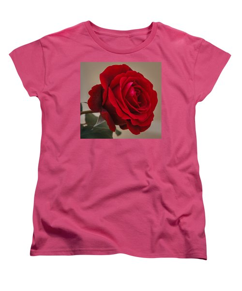 Red Rose Women's T-Shirt (Standard Cut) by Jane Luxton