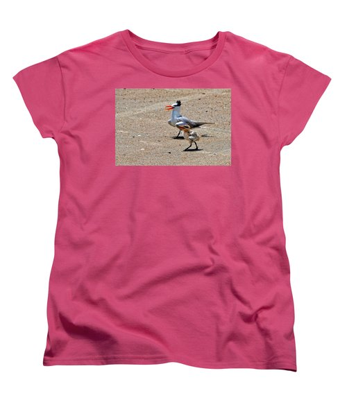 Royal Tern With Chick Women's T-Shirt (Standard Cut) by Ludwig Keck