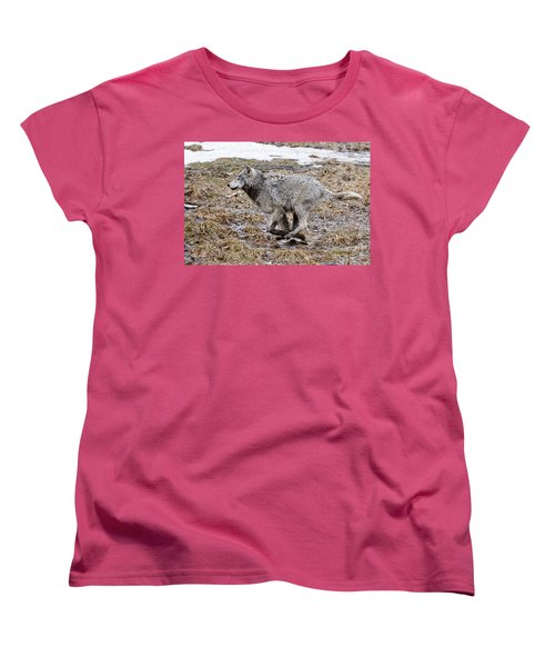 Women's T-Shirt (Standard Cut) featuring the photograph Running Timber Wolf by Wolves Only