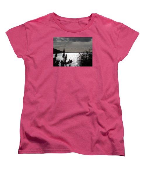 Silver Women's T-Shirt (Standard Cut) by Richard Brookes