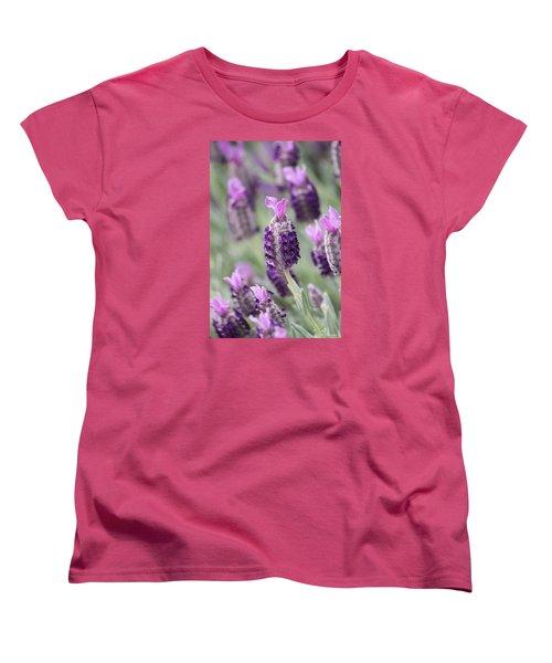 Spanish Breeze Women's T-Shirt (Standard Cut) by Amy Gallagher