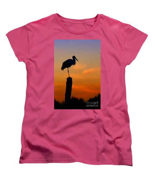 Storck In Silhouette High On A Pole Women's T-Shirt (Standard Cut) by Nick  Biemans