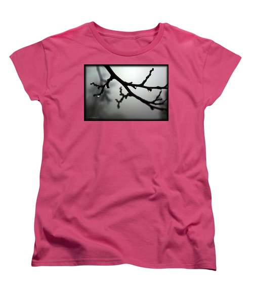 The Foggiest Idea Women's T-Shirt (Standard Cut) by Brian Wallace