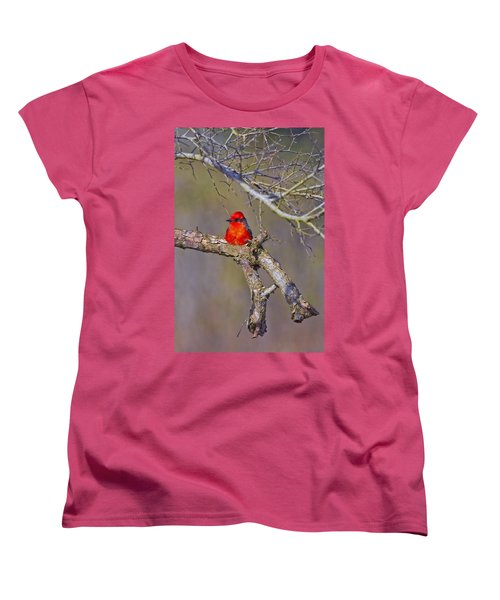 The Scarlet Letter Women's T-Shirt (Standard Cut) by Gary Holmes
