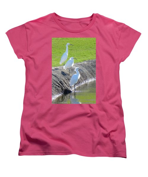 Women's T-Shirt (Standard Cut) featuring the photograph Three Stooges by Deb Halloran