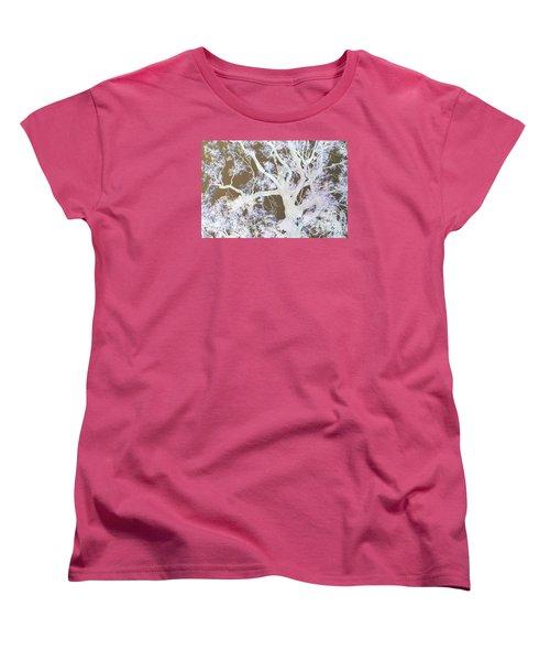 Women's T-Shirt (Standard Cut) featuring the photograph Tree Inversion by Cassandra Buckley