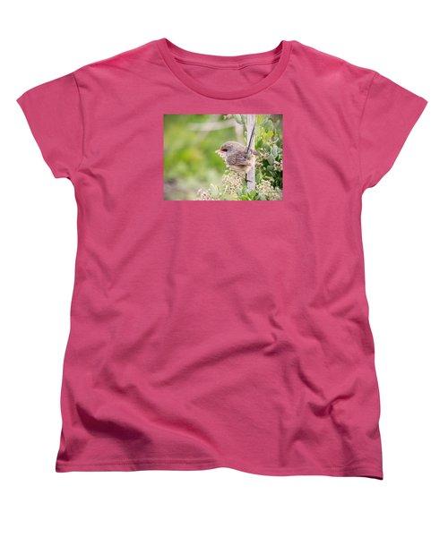 Variegated Fairywren  Women's T-Shirt (Standard Cut) by Kym Clarke