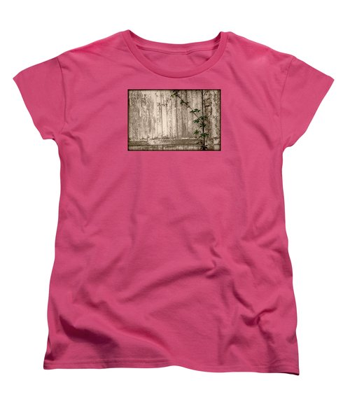 Women's T-Shirt (Standard Cut) featuring the photograph Vine And Fence by Amanda Vouglas