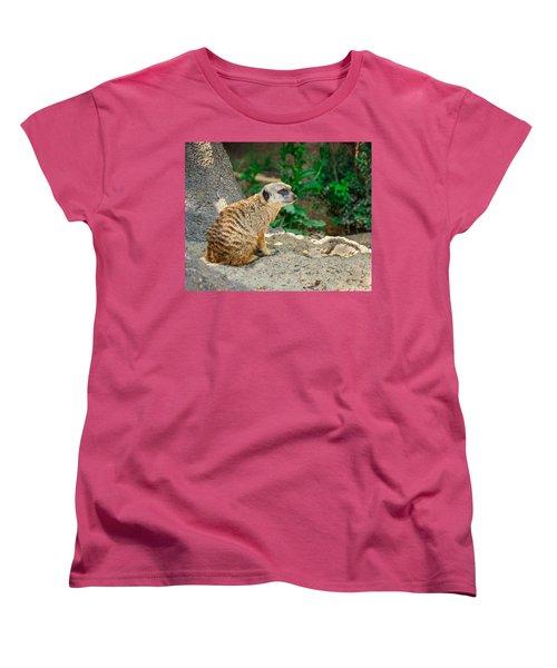 Watchful Meerkat Women's T-Shirt (Standard Cut) by Jon Woodhams