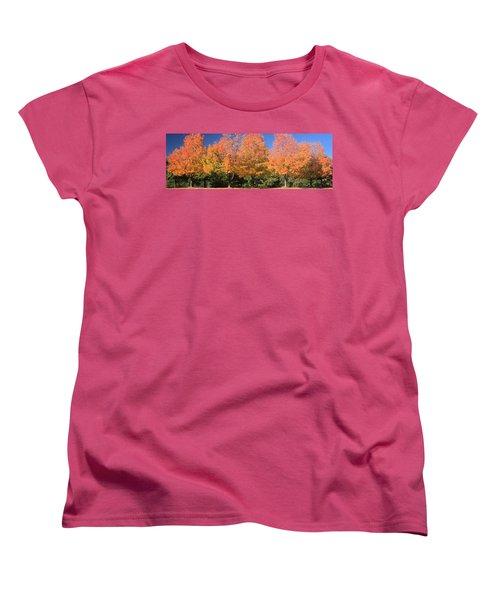 Women's T-Shirt (Standard Cut) featuring the photograph Welcome Autumn by Gordon Elwell