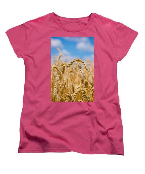 Wheat Women's T-Shirt (Standard Cut) by Cheryl Baxter