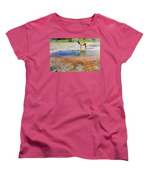 Women's T-Shirt (Standard Cut) featuring the photograph Wild And Free In Yellowstone by Teresa Zieba