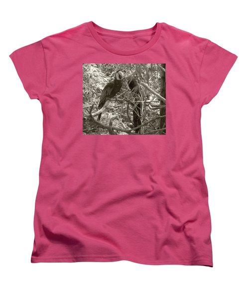 Women's T-Shirt (Standard Cut) featuring the photograph Wild Hawaiian Parrot Sepia by Joseph Baril