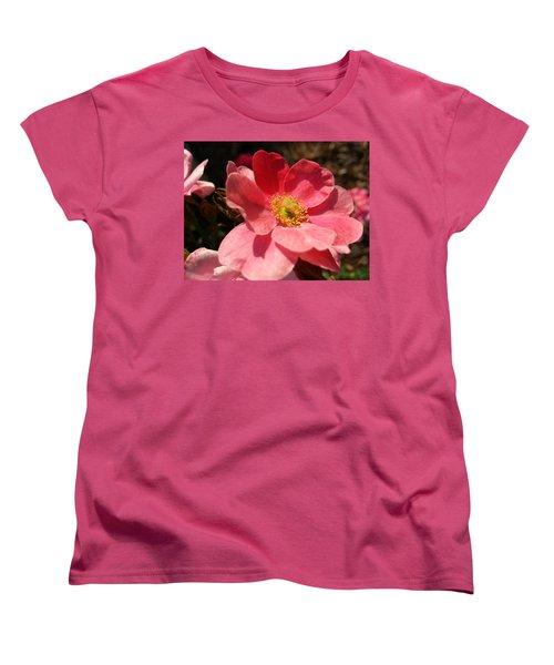Wild Rose Women's T-Shirt (Standard Cut) by Caryl J Bohn