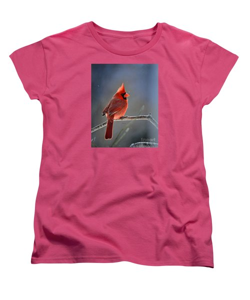 Winter Morning Cardinal Women's T-Shirt (Standard Cut) by Nava Thompson