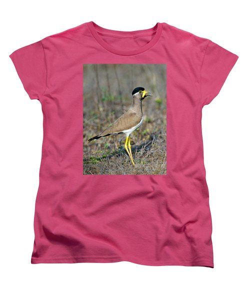 Yellow-wattled Lapwing Vanellus Women's T-Shirt (Standard Cut) by Panoramic Images