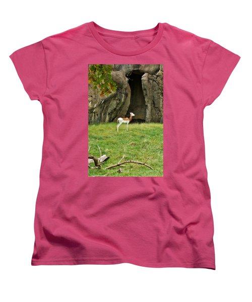 Young Addra Gazelle Women's T-Shirt (Standard Cut)