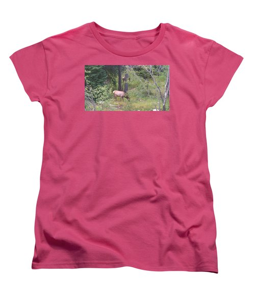 Women's T-Shirt (Standard Cut) featuring the photograph Young Elk Grazing by Fortunate Findings Shirley Dickerson