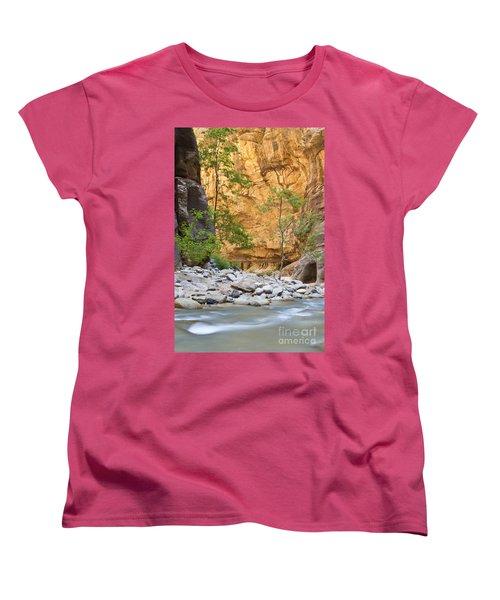 Women's T-Shirt (Standard Cut) featuring the photograph Zion Narrows by Bryan Keil