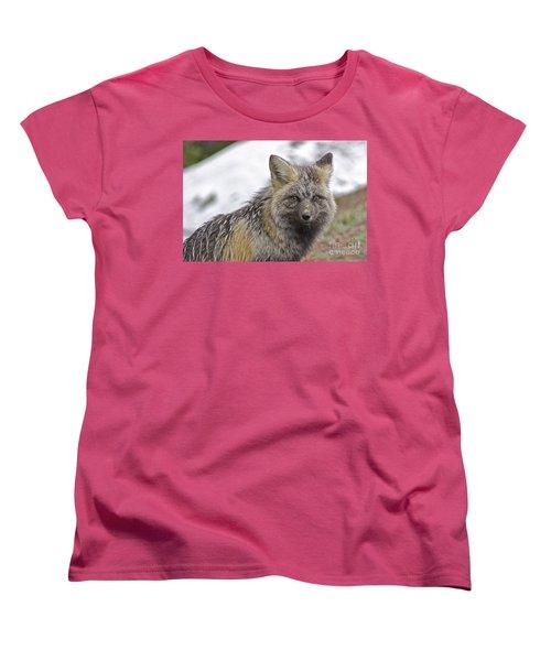 Cascade Red Fox Women's T-Shirt (Standard Cut) by Sean Griffin