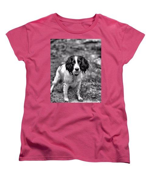 Springer Spaniel Women's T-Shirt (Standard Cut) by Marlo Horne