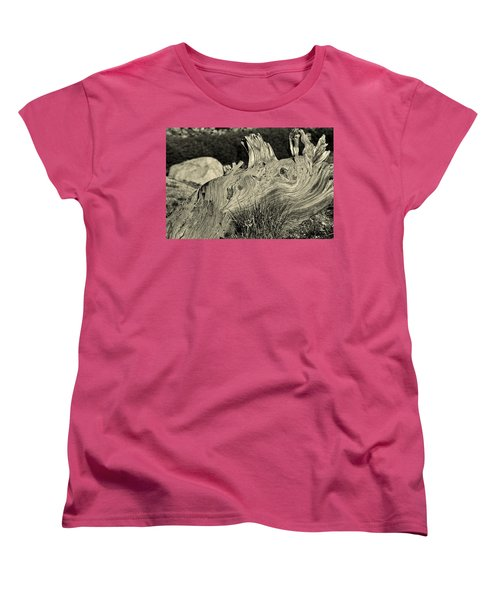 Weathered Women's T-Shirt (Standard Cut) by Colleen Coccia