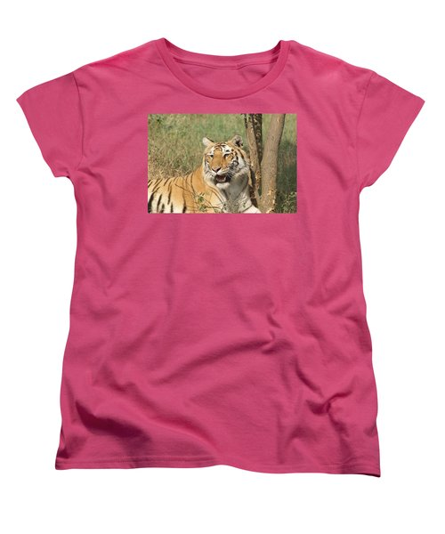 A Tiger Lying Casually But Fully Alert Women's T-Shirt (Standard Cut) by Ashish Agarwal