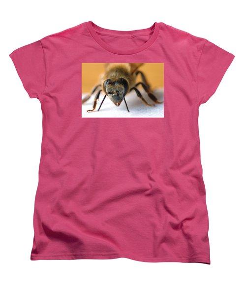 Bee In Macro 4 Women's T-Shirt (Standard Cut) by Micah May