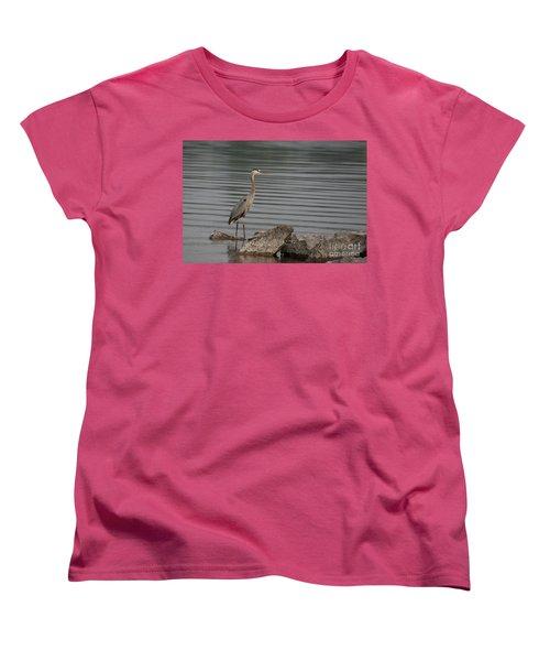 Cautious Women's T-Shirt (Standard Cut) by Eunice Gibb