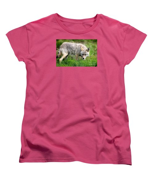 Women's T-Shirt (Standard Cut) featuring the photograph Coyote On The Prowl by Kathy  White