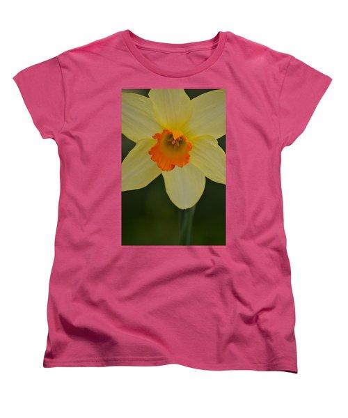 Daffodilicious Women's T-Shirt (Standard Cut) by JD Grimes