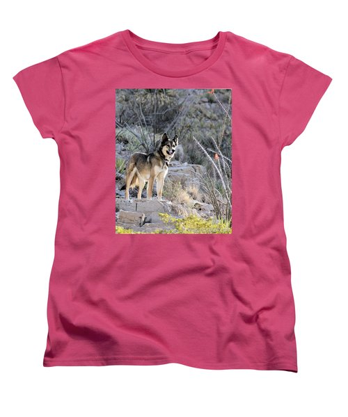 Dog In The Mountains Women's T-Shirt (Standard Cut) by Marlo Horne