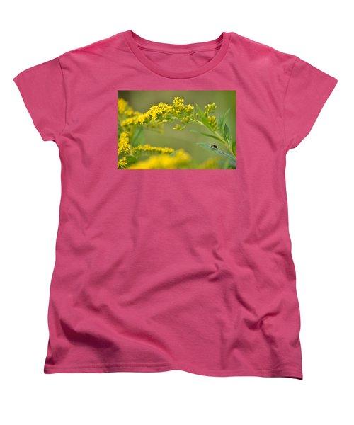 Golden Perch Women's T-Shirt (Standard Cut) by JD Grimes