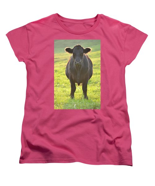 Here's The Beef Women's T-Shirt (Standard Cut) by JD Grimes