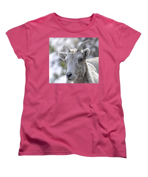How Close Is Too Close Women's T-Shirt (Standard Cut) by Dorrene BrownButterfield