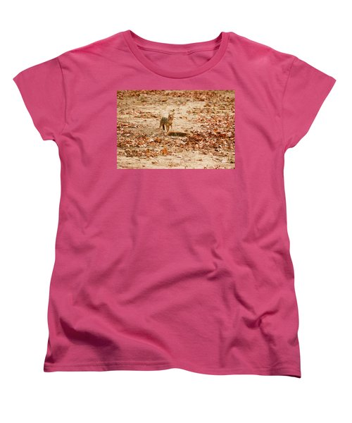 Women's T-Shirt (Standard Cut) featuring the photograph Jackal Standing Over Deer Kill by Fotosas Photography