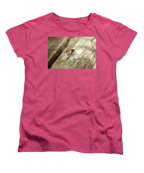 Women's T-Shirt (Standard Cut) featuring the photograph Little Jumper In Sepia by JD Grimes