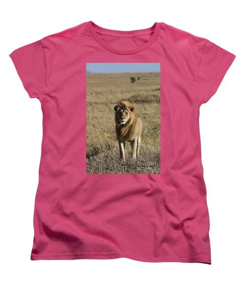 Male Lion's Gaze Women's T-Shirt (Standard Cut) by Darcy Michaelchuk