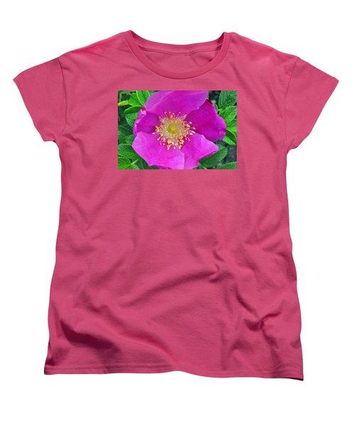 Pink Portulaca Women's T-Shirt (Standard Cut) by Tikvah's Hope