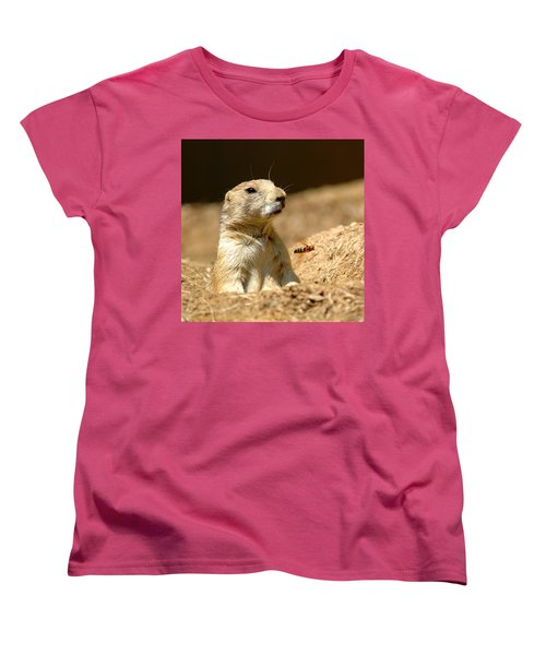 Prarie Dog Bee Alert Women's T-Shirt (Standard Cut) by LeeAnn McLaneGoetz McLaneGoetzStudioLLCcom