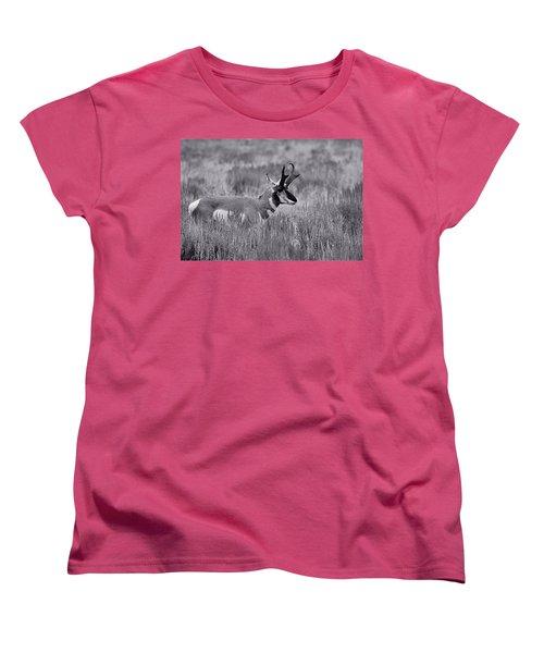 Women's T-Shirt (Standard Cut) featuring the photograph Pronghorn  by Eric Tressler
