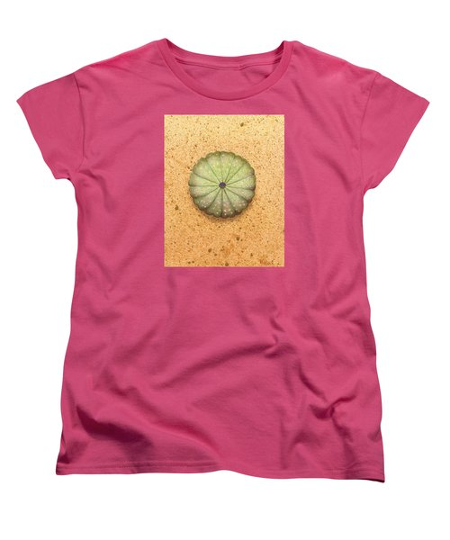 Sea Urchin Women's T-Shirt (Standard Cut) by Katherine Young-Beck