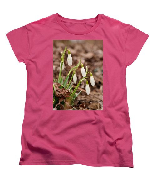 Snow Drops Women's T-Shirt (Standard Cut) by JD Grimes