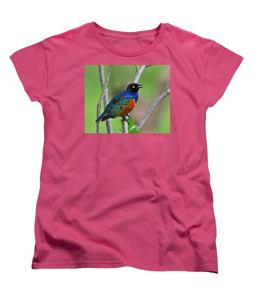 Superb Starling Women's T-Shirt (Standard Cut) by Tony Beck