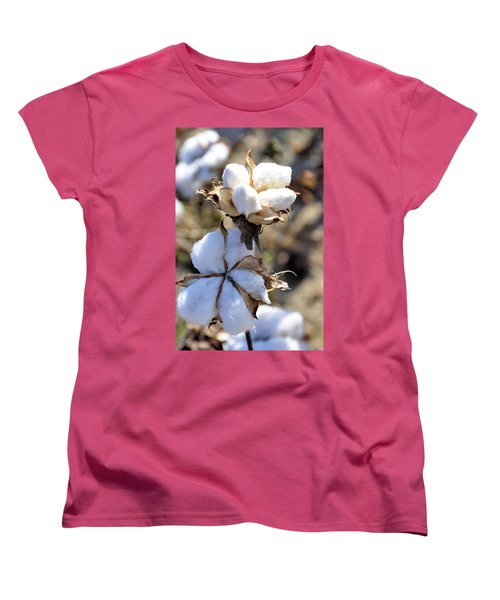 The Cotton Is Ready Women's T-Shirt (Standard Cut) by Jan Amiss Photography