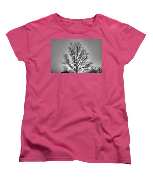 Through The Boughs Bw Women's T-Shirt (Standard Cut) by Dan Stone