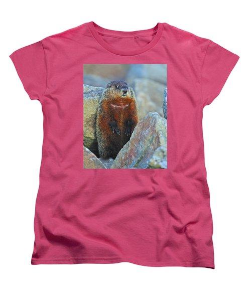 Woodchuck Women's T-Shirt (Standard Cut) by Tony Beck